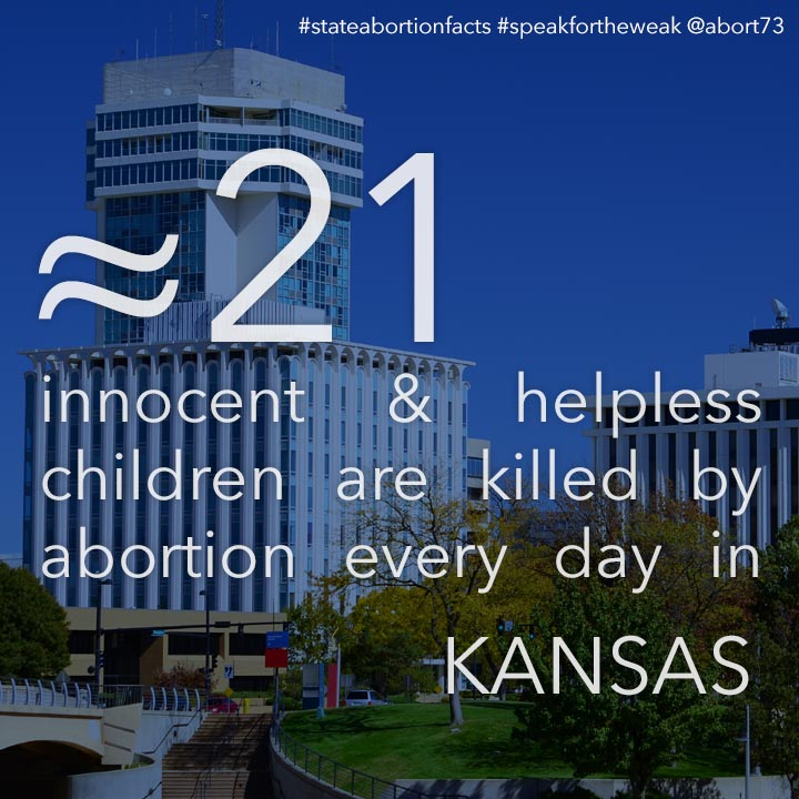 ≈ 19 innocent & helpless children are killed by abortion every day in Kansas