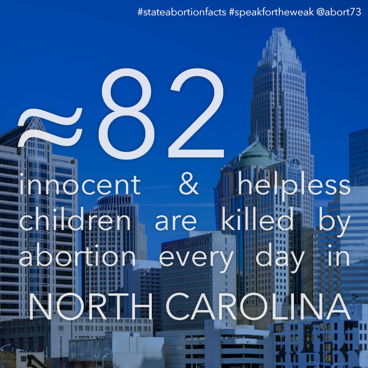 ≈ 74 innocent & helpless children are killed by abortion every day in North Carolina