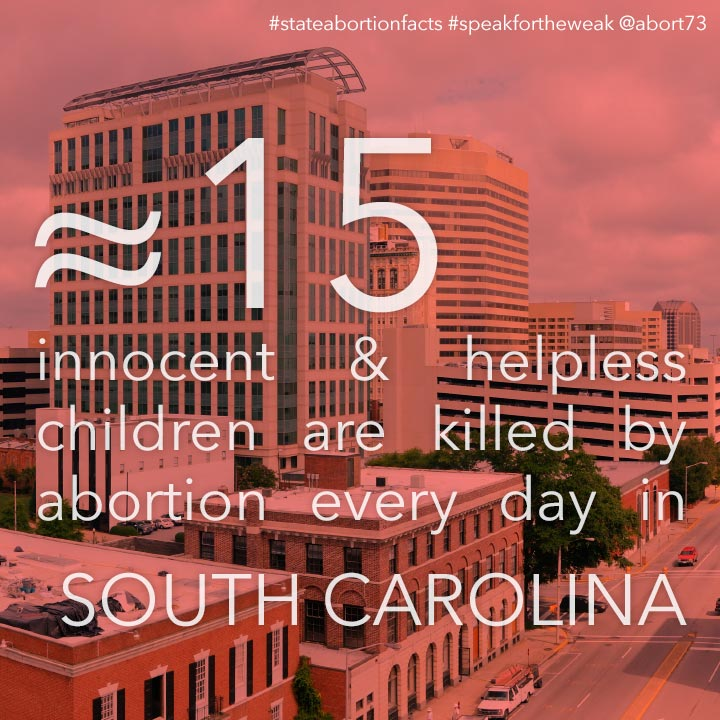 ≈ 13 innocent & helpless children are killed by abortion every day in South Carolina