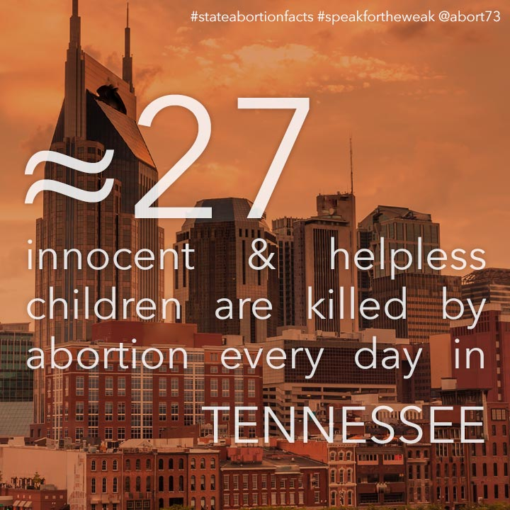 ≈ 31 innocent & helpless children are killed by abortion every day in Tennessee